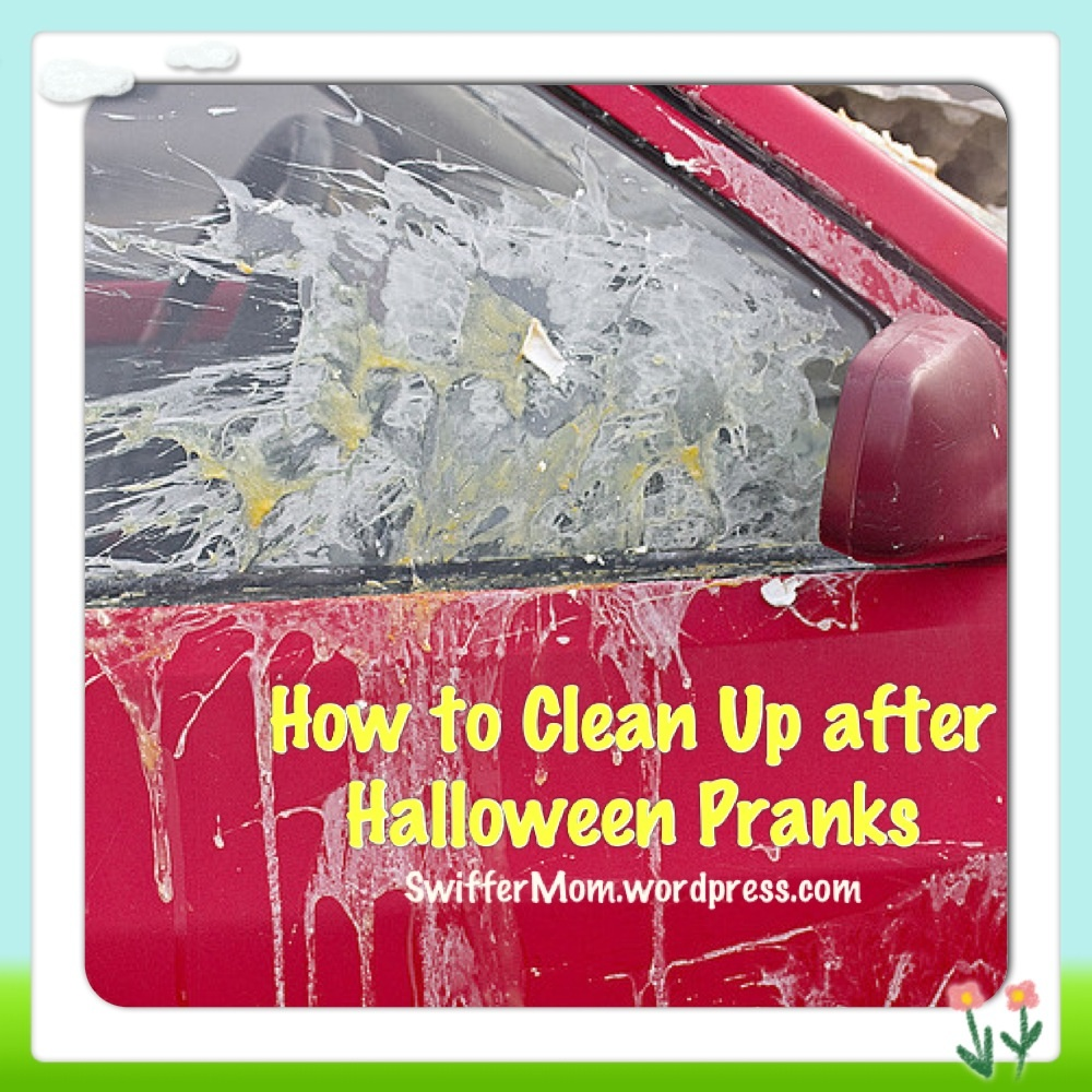 how to clean egg off your car